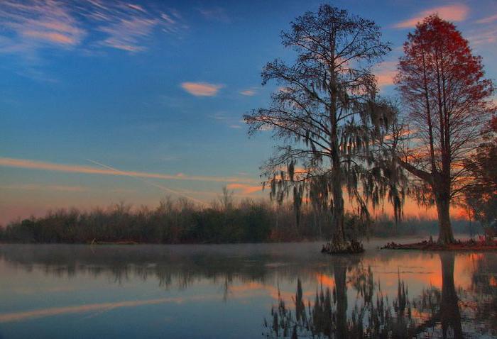 Великолепие нашей планеты во всей красе (50 фото)