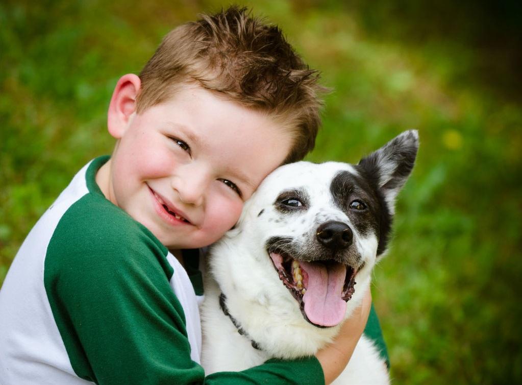какую пользу животные приносят детям