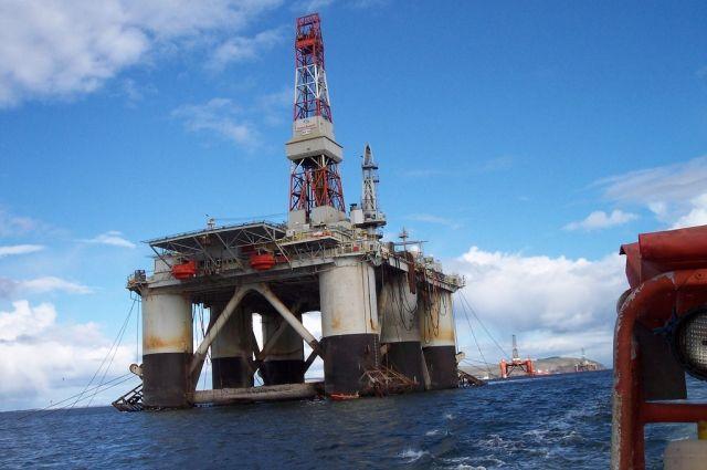 Эксперты РАН прогнозируют рост цен на нефть в ближайшие три года
