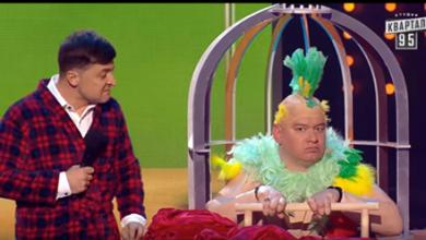 Photo of Муж на свою беду научил попугая разговаривать. Угарный номер!