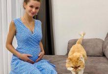 Photo of Супруга Андрея Чуева узнала на УЗИ пол ребенка