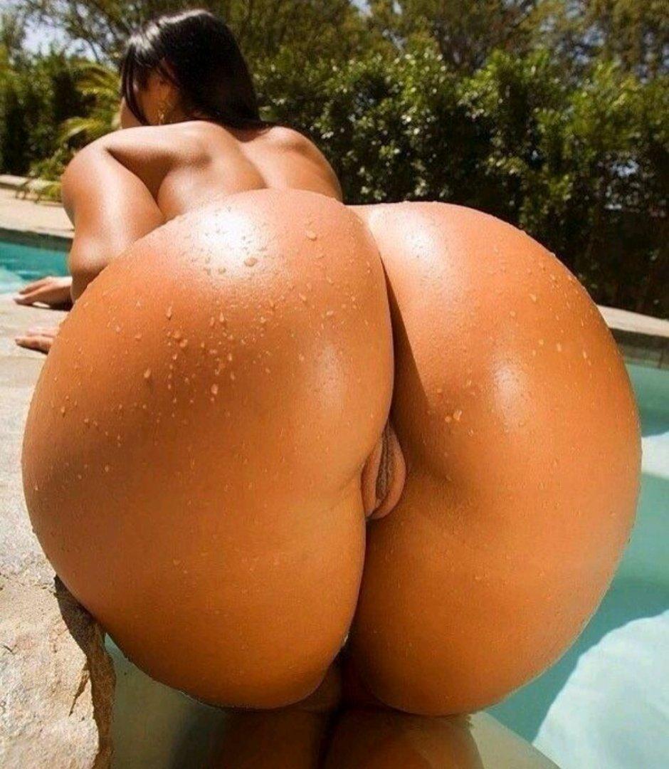Big ass pics, free big booty porn